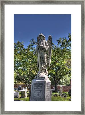 Wings Of The Angel Framed Print by Shannon Louder