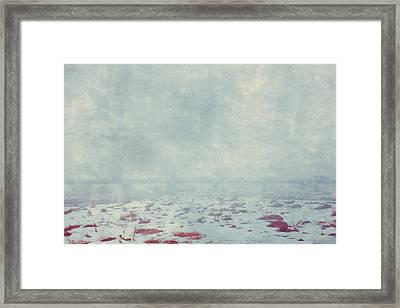Winter 057 Framed Print by Violet Gray