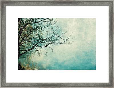Winter 058 Framed Print by Violet Gray