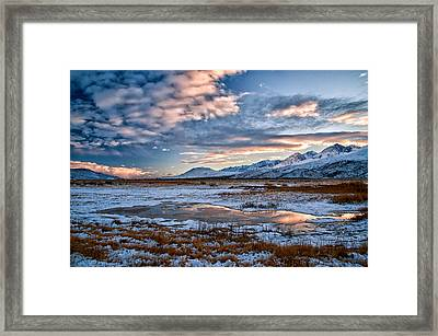 Winter Afternoon Framed Print by Cat Connor
