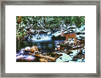 Winter Along Rock Castle  Framed Print by Darren Fisher