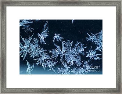 Winter Art Framed Print by Darren Fisher
