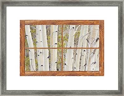 Winter Aspen Tree Forest Barn Wood Picture Window Frame View Framed Print by James BO  Insogna