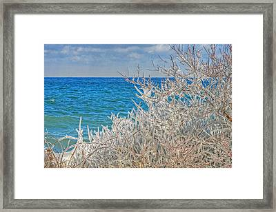 Winter Beach Framed Print by Michael Allen
