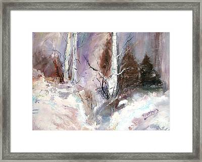 Winter Birches Framed Print by Barbara Cole