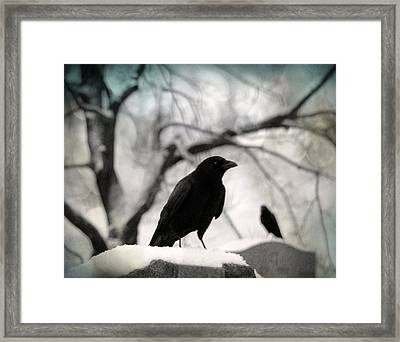 Winter Blackbirds Framed Print by Gothicolors Donna Snyder