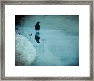 Winter Blues Framed Print by Gothicolors Donna Snyder