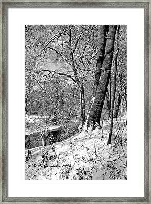 Framed Print featuring the photograph Winter By A Pennsylvania Stream by A Gurmankin