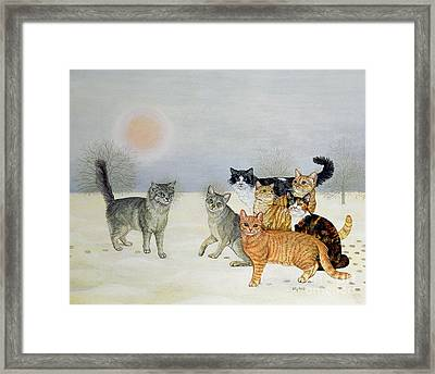 Winter Cats Framed Print by Ditz