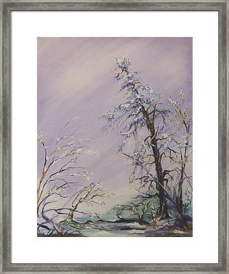 Winter Framed Print by Clay Coyle