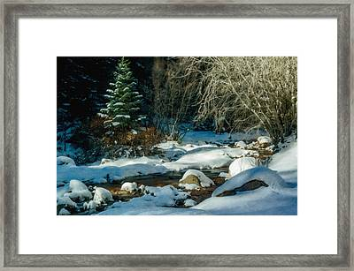 Winter Creek Framed Print by Ernie Echols