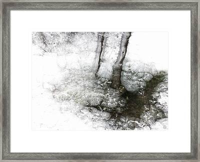 Winter Creek Framed Print by Gun Legler