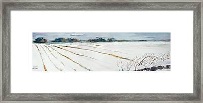 Winter Crop Framed Print by Scott Nelson