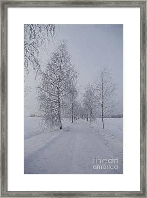 Winter Day Framed Print by Veikko Suikkanen