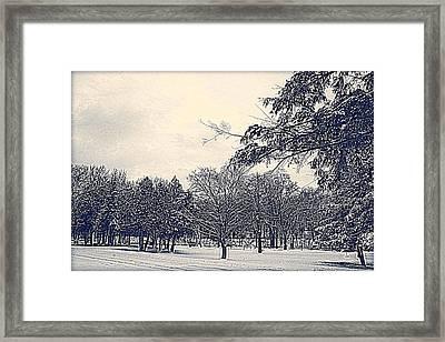 Winter Days Framed Print by Kay Novy