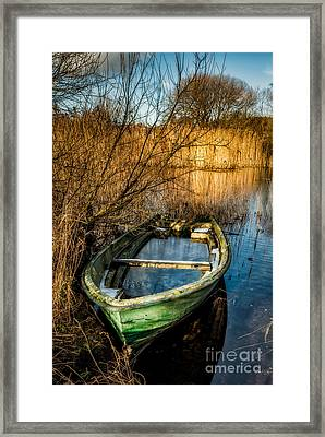 Winter Decay Framed Print by Adrian Evans