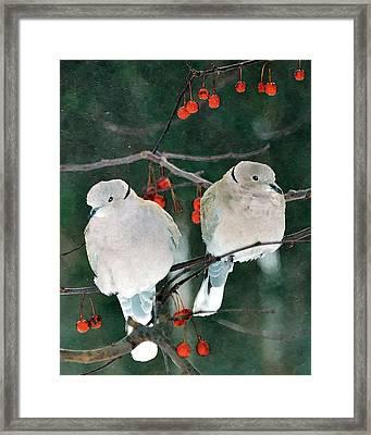 Winter Doves Framed Print by Betty LaRue