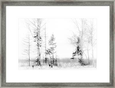 Winter Drawing Framed Print by Jenny Rainbow