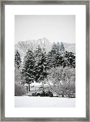 Winter Dream Framed Print by Allan Millora