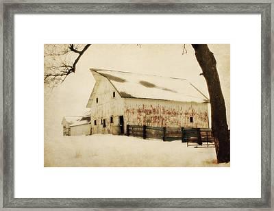 Blended In Framed Print by Julie Hamilton