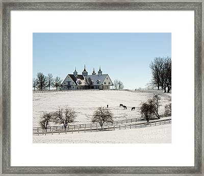 Winter Dream Framed Print by Roger Potts