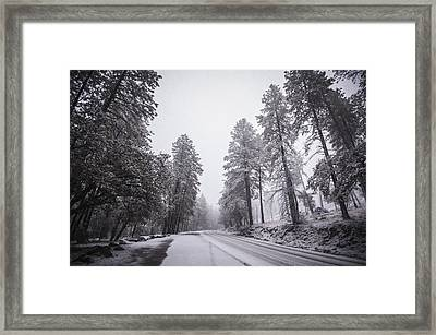 Winter Driven Framed Print by Anthony Citro