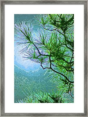 Winter Evergreen  Framed Print by First Star Art