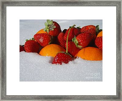 Winter Feast Framed Print by Kristine Nora