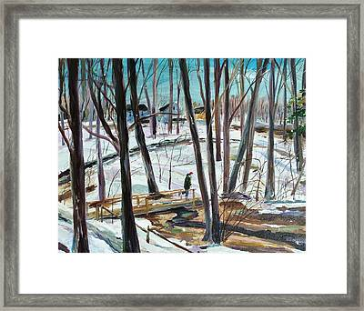 Winter Footbridge Framed Print by Scott Nelson
