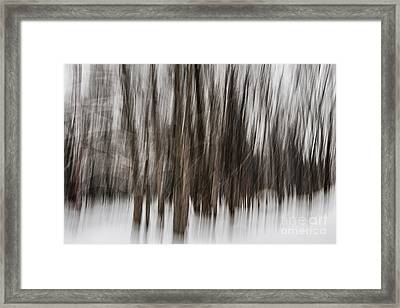 Winter Forest Abstract Framed Print by Elena Elisseeva