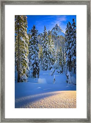Winter Forest Framed Print by Inge Johnsson