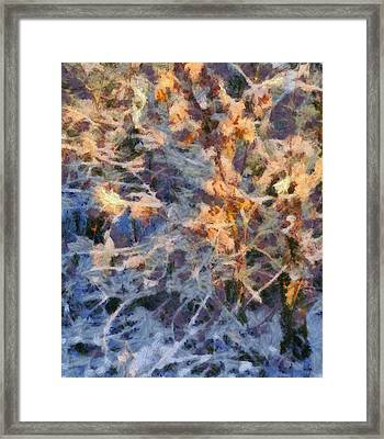 Winter Glory Framed Print by Dan Sproul