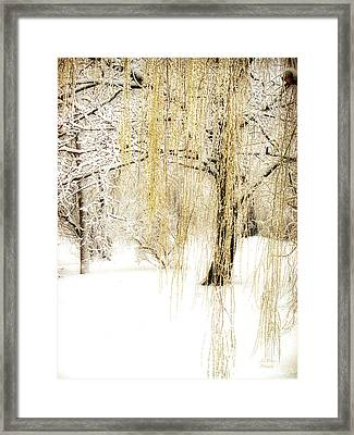 Winter Gold Framed Print by Julie Palencia