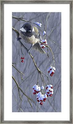 Winter Harvest 1 Chickadee And Berries Painting Framed Print by Karen Whitworth