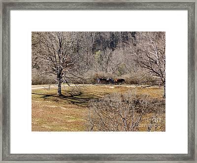 Winter Hayride Framed Print by Skip Willits
