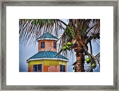 Winter In Nassau Framed Print by Alexandra Jordankova