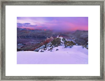 Winter Kiss Framed Print by Peter Coskun
