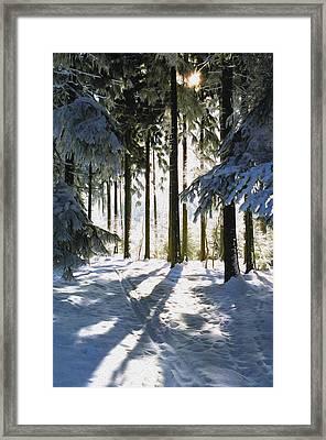 Winter Landscape Framed Print by Aged Pixel