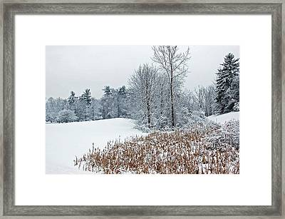 Winter Landscape Framed Print by Aimee L Maher Photography and Art Visit ALMGallerydotcom