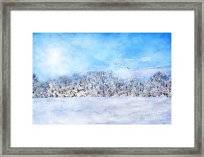 Winter Landscape Framed Print by Darren Fisher