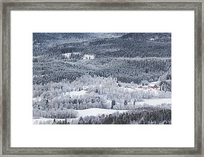 Winter Landscape View From Above On Winter Forest Under Snow Framed Print by Aldona Pivoriene