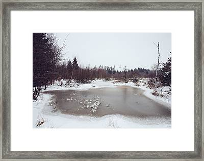 Winter Landscape With Trees And Frozen Pond Framed Print by Matthias Hauser