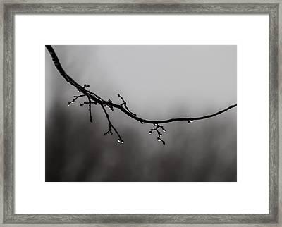 Winter Lights Framed Print by Odd Jeppesen