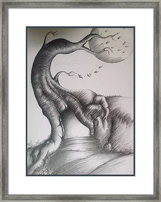 Winter Loneliness Framed Print by Abhilash Am