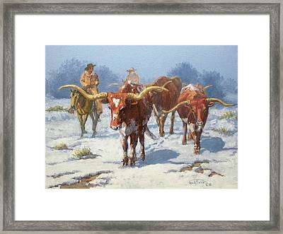 Winter Longhorns Framed Print by Randy Follis