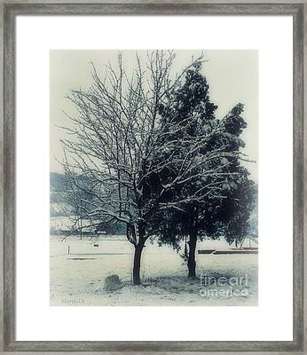 Winter Lovers Framed Print by Marija Djedovic