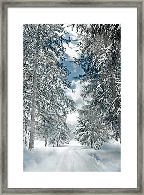 Winter Me Framed Print by Diana Angstadt