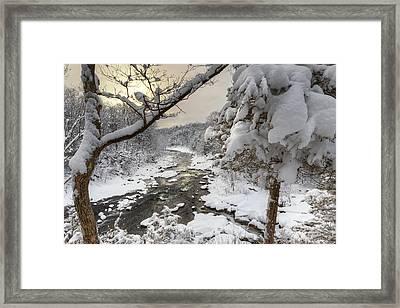 Winter Morning Framed Print by Bill Wakeley