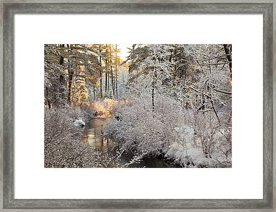 Winter Morning Framed Print by Larry Landolfi