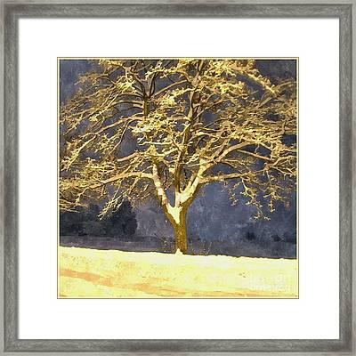 Winter Night - Snowy Tree Framed Print by Jutta Wolfram